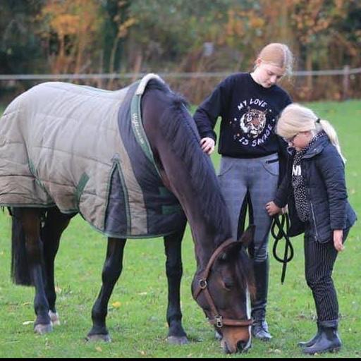 Paardencoach clinic voor kinderen